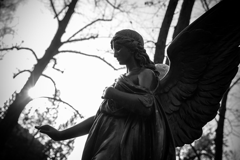 Angelus lucis